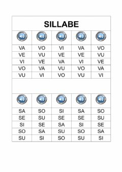 Interactive worksheet Sillabe V S