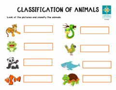 Interactive worksheet Classification of animals