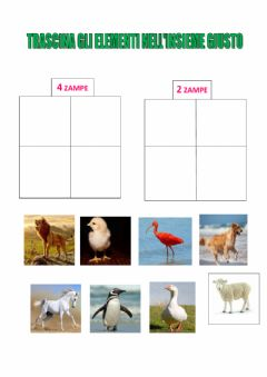 Interactive worksheet Animali a 2 zampe e a 4 zampe