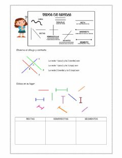 Interactive worksheet Tipos de líneas 2