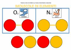 Interactive worksheet Le molecole