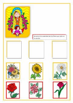 Interactive worksheet Flores