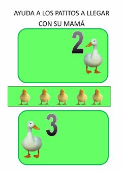 Interactive worksheet Patitos