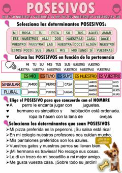 Interactive worksheet Los determinantes posesivos