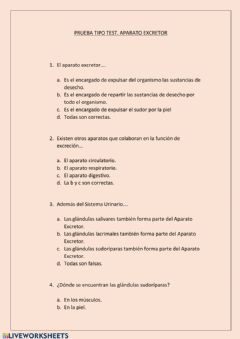 Interactive worksheet Test aparato Excretor