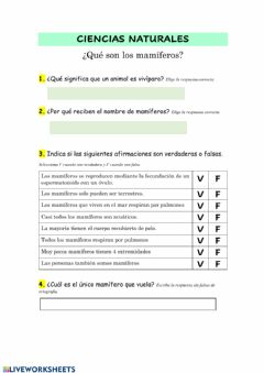 Interactive worksheet ¿Qué son los mamíferos?