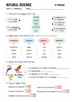 Interactive worksheet Unit 2: What do you know about animals?