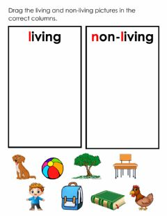 Interactive worksheet Living and Non-living