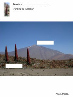 Interactive worksheet Teide