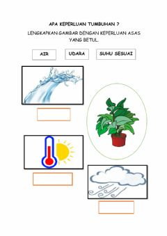 Interactive worksheet Tumbuhan livews