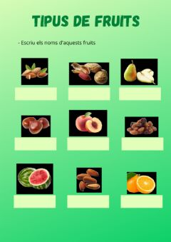 Interactive worksheet Tipus de fruits