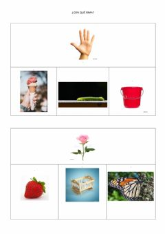 Interactive worksheet Rima de palabras