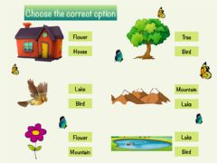 Interactive worksheet Choose the correct word