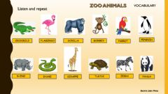Ficha interactiva Listen and repeat - Zoo animals Vocabulary