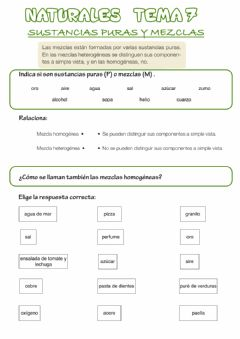 Interactive worksheet Sustancias puras y mezclas