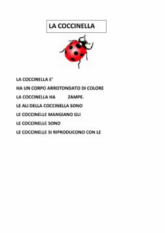 Interactive worksheet La coccinella