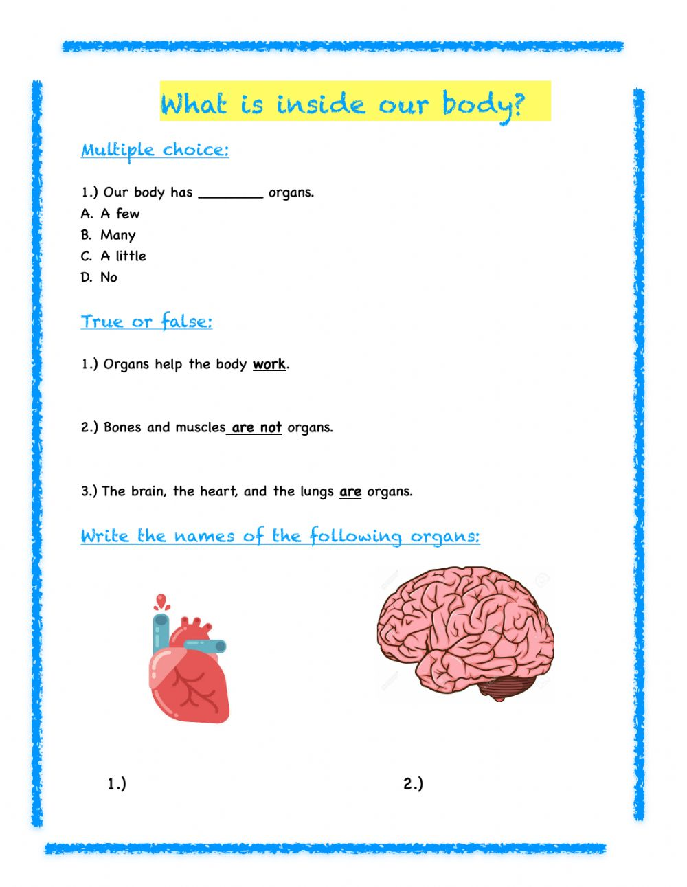3rd Grade Science Review Worksheet