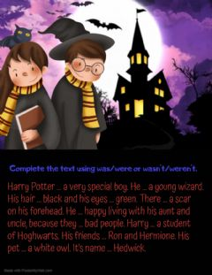 Ficha interactiva Harry Potter (was-were)