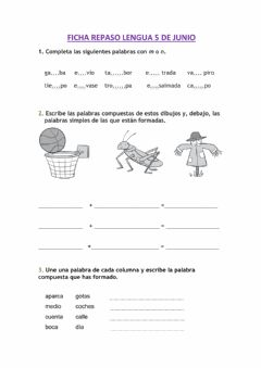 Interactive worksheet Repaso lengua