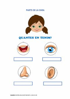 Interactive worksheet Quantes parts de la cara tenim