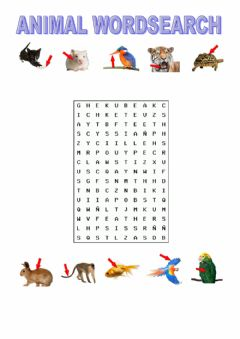 Ficha interactiva Animal body parts wordsearch tiger macmillan