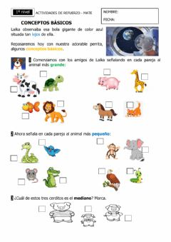 Interactive worksheet Conceptos básicos
