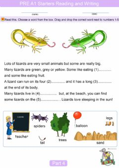 Interactive worksheet Pre A1 Starters