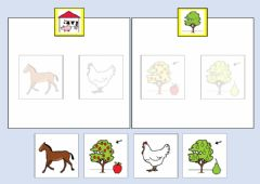 Interactive worksheet Classificare con aiuto visivo animali alberi