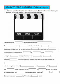 Interactive worksheet El aparato circulatorio