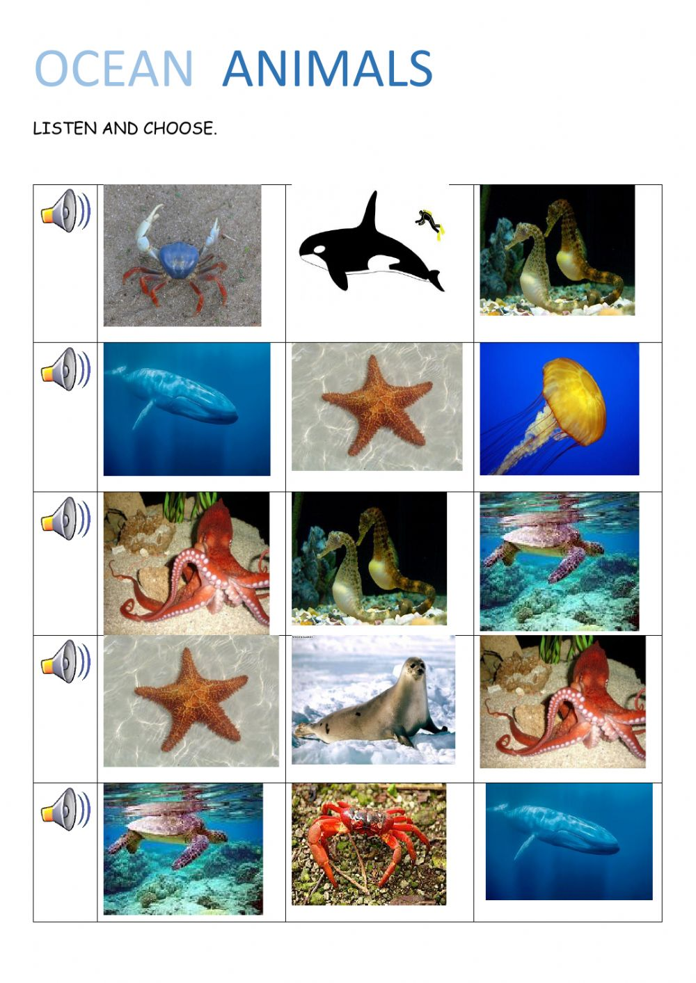 Ocean Animals Online Activity