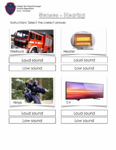 Interactive worksheet Senses -Hearing