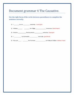 Interactive worksheet The causative