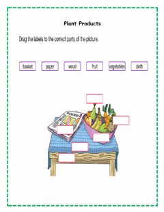 Interactive worksheet Plant Products