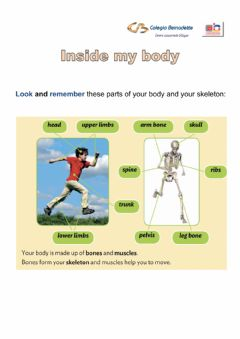 Interactive worksheet Inside my body