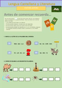 Interactive worksheet Uso del guion