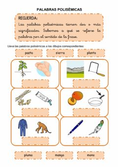 Interactive worksheet Palabras polisémicas 3