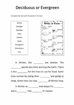 Interactive worksheet Deciduous or evergreen trees