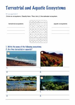 Interactive worksheet Terrestrial aquatic ecosystem