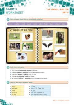 Interactive worksheet 5th Grade-Unit 9 Animal Shelter WS