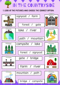 Interactive worksheet Unit 6.in the countryside