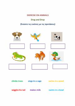 Interactive worksheet Exercise on Animals