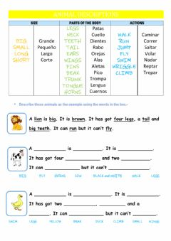 Interactive worksheet Animal Descriptions