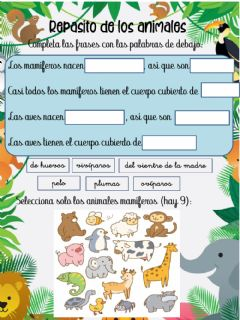 Interactive worksheet Mamíferos y aves