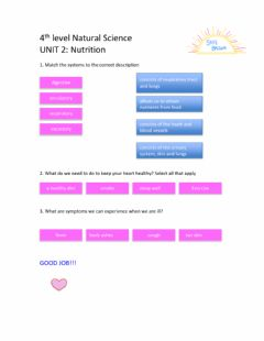 Interactive worksheet 4th Level Social Science Unit 2