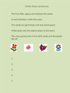 Interactive worksheet Unit 4 Life Cycle of an Angiosperm Activity