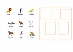 Interactive worksheet Aves clasificar