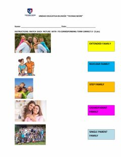 Interactive worksheet Types of families