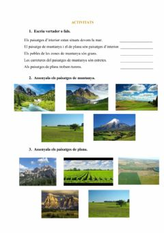 Interactive worksheet Paisatges d'interior