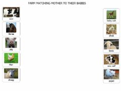 Ficha interactiva Farm Matching - Mother to their Babies