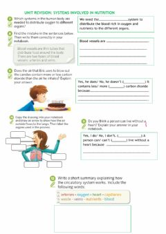 Interactive worksheet Systems involved in nutrition